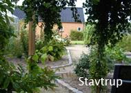 landhaver_stavtrup
