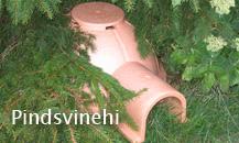 link_15_pindsvinehi