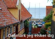 foredrag_danmark